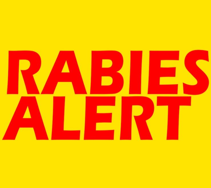 Sign that reads &#34Rabies Alert&#34
